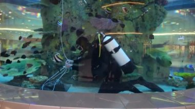 Diver on bottom of aquarium in shopping center