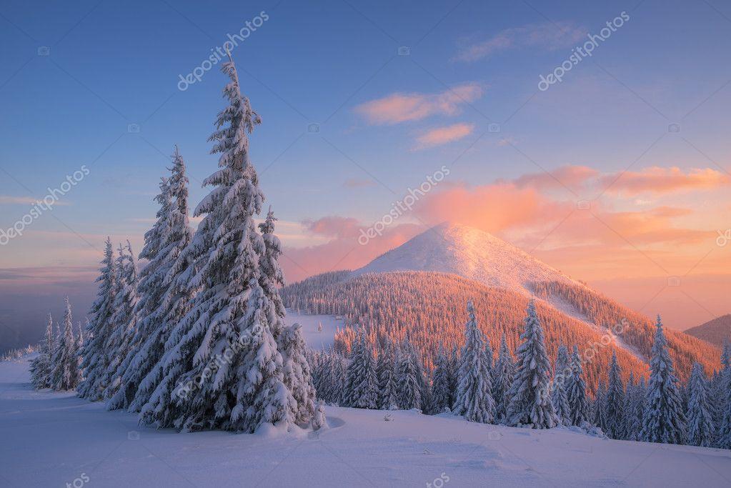природа снег зима деревья горы  № 2577043 бесплатно