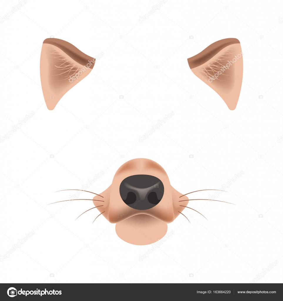 Dog face template