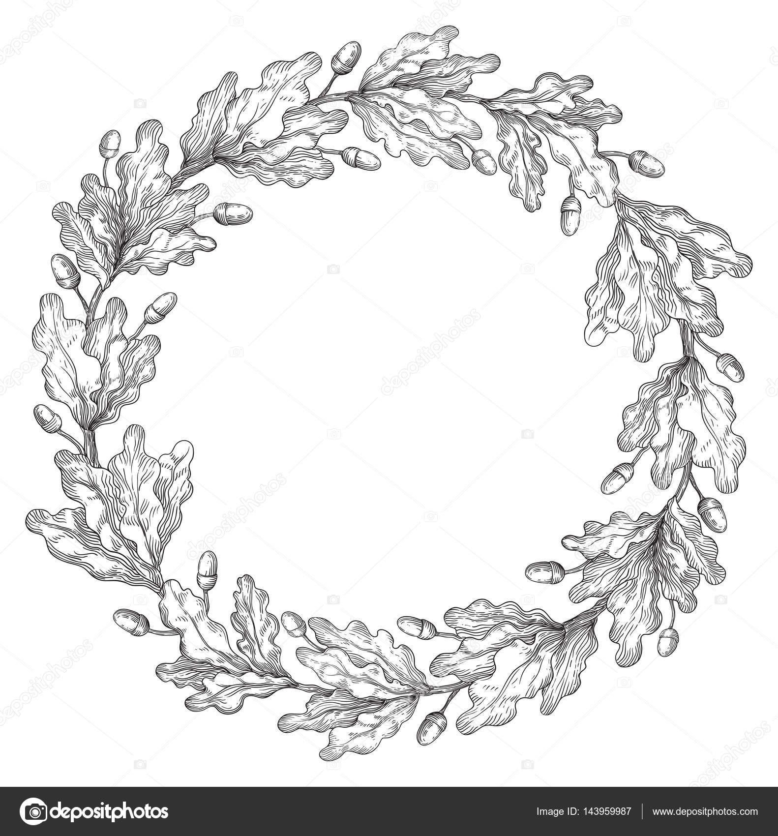 橡树花环框架 — 图库矢量图像08 song_mi
