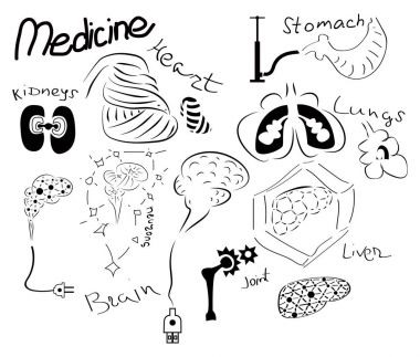 Set of organs.