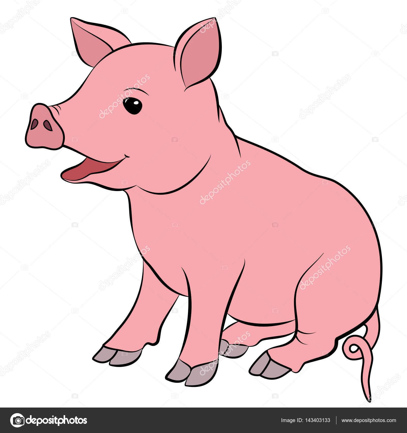 可爱的小猪卡通.eps 10 矢量图