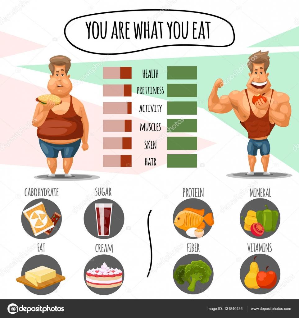 правильное питание отзывы и результаты похудевших фото