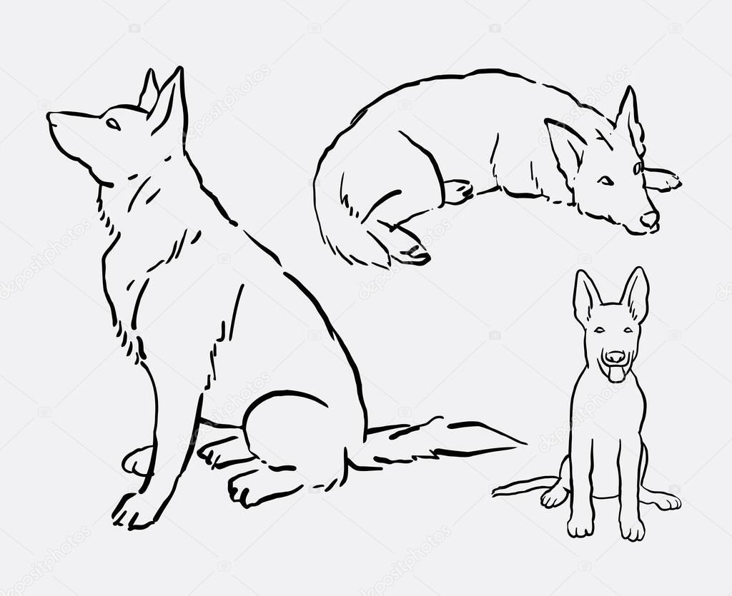 Arte De Línea Animal Mascota Perro Pastor Alemán De