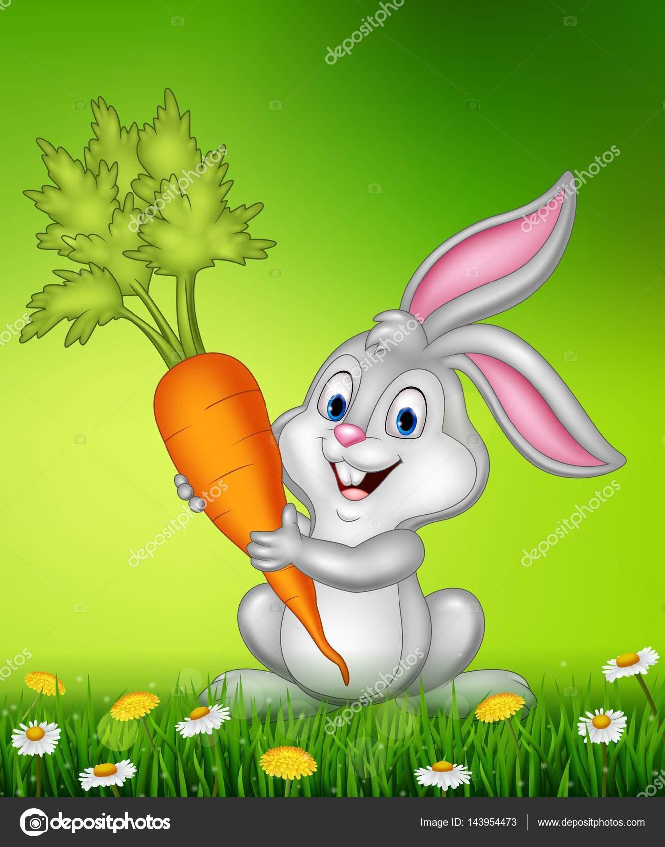 矢量图的拿着胡萝卜的兔子– 图库插图