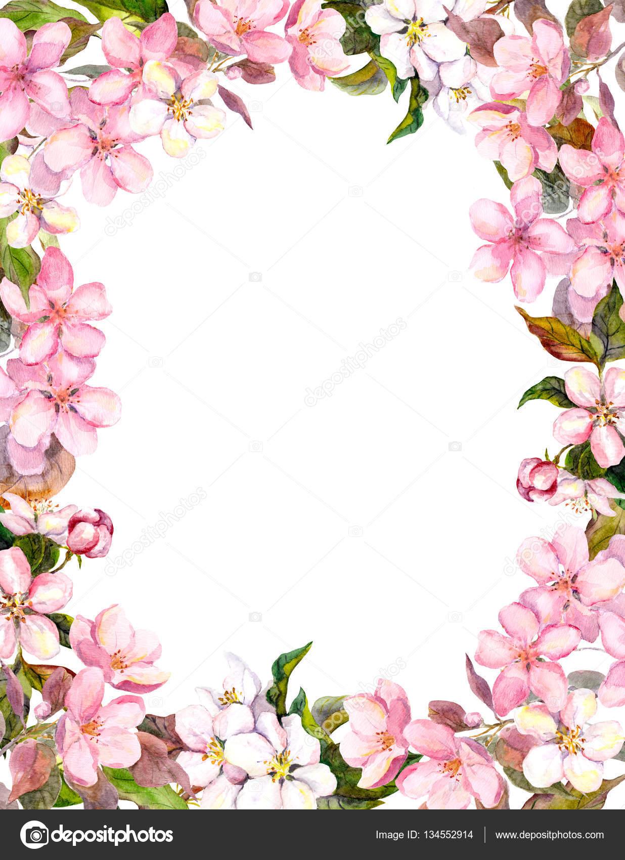 Roze Bloemen Apple Kersenbloesem Floral Rand Voor