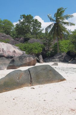Basalt educations in tropics. Baie Lazare, Mahe, Seychelles