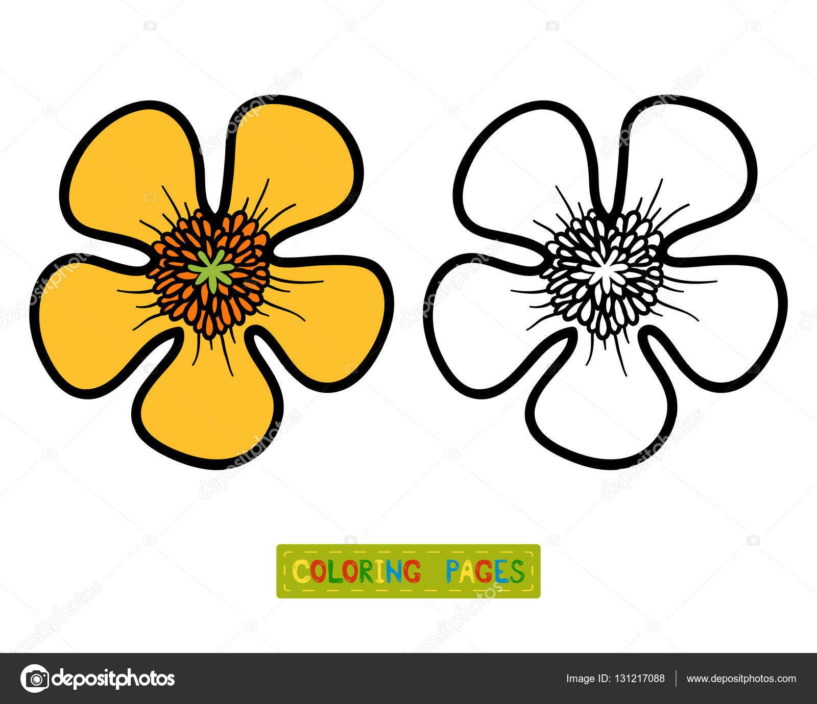 Раскраска желтый цветок