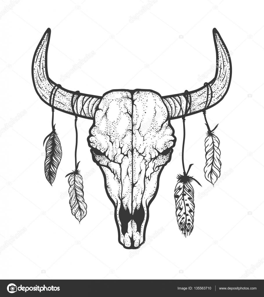 Bull Skull With Feathers Native Americans Tribal Style