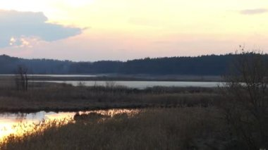 Pan Shot of a Nice Lake at Sunset in a Forest in Early Spring