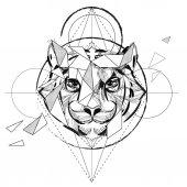 морда тигра раскраски