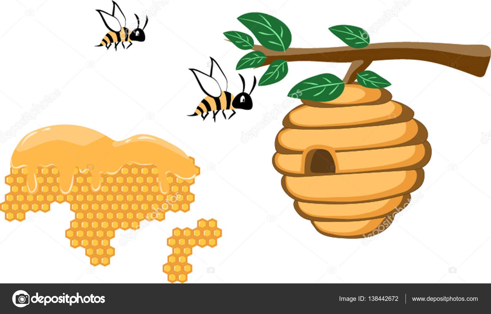 Nid D'abeille Et Ruche Sauvage Avec Des Abeilles Sur L