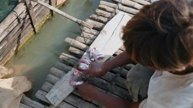 Man cutting fish