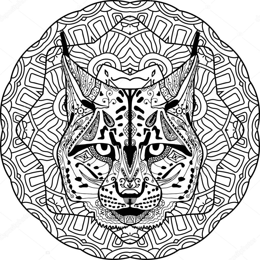 HD wallpapers bobcat coloring pictures