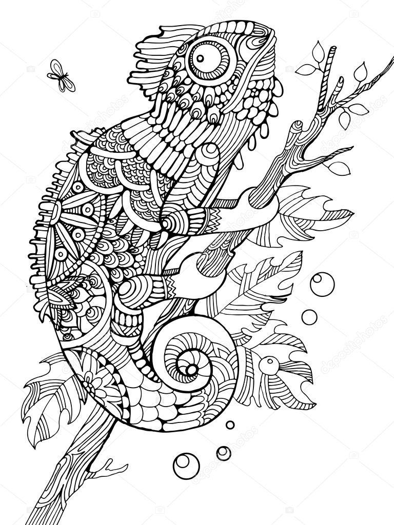 Kameleon Kleuren Boek Voor Volwassenen Vector