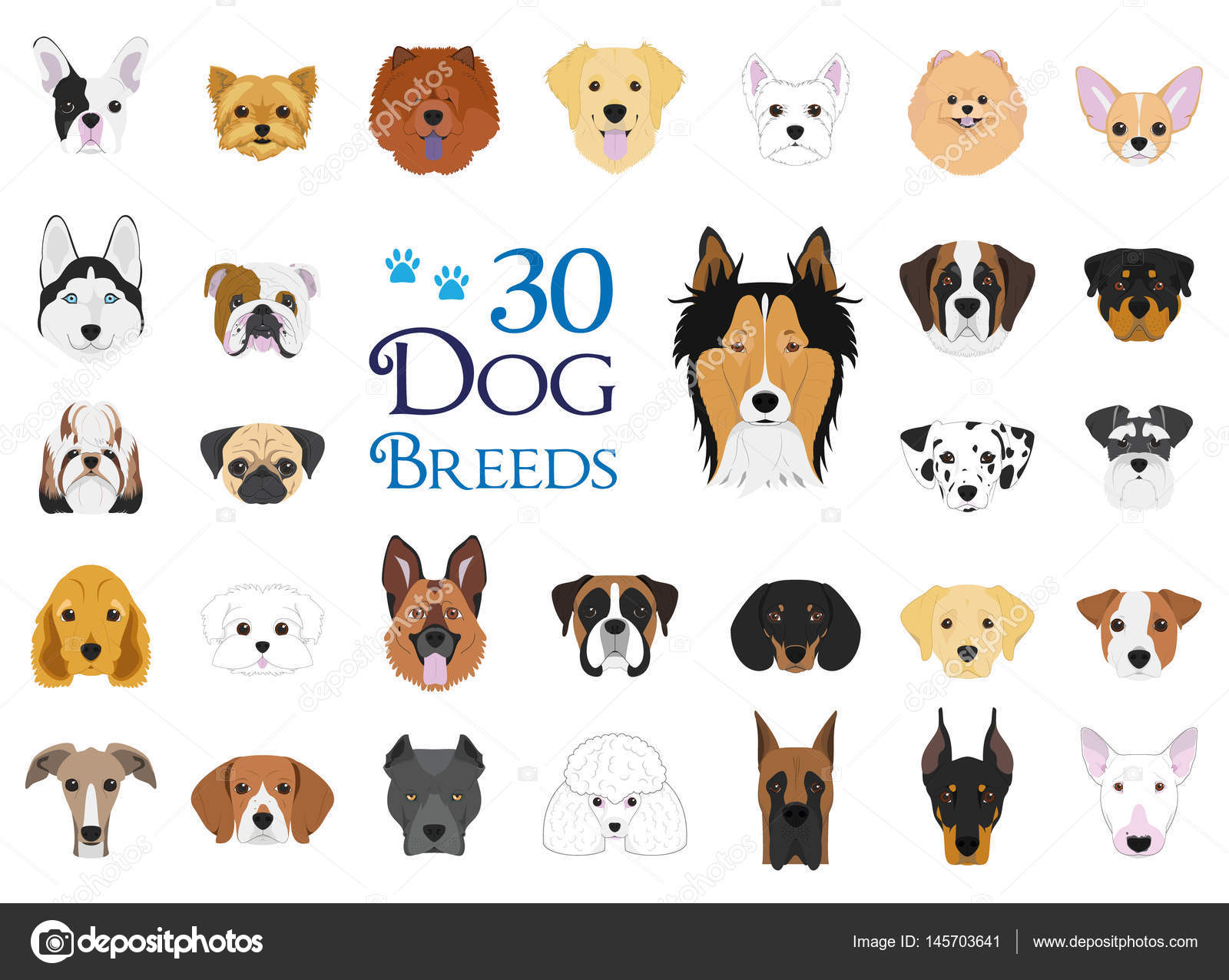 全犬种矢量集合︰ 30 不同品种的狗在卡通风格集– 图库插图