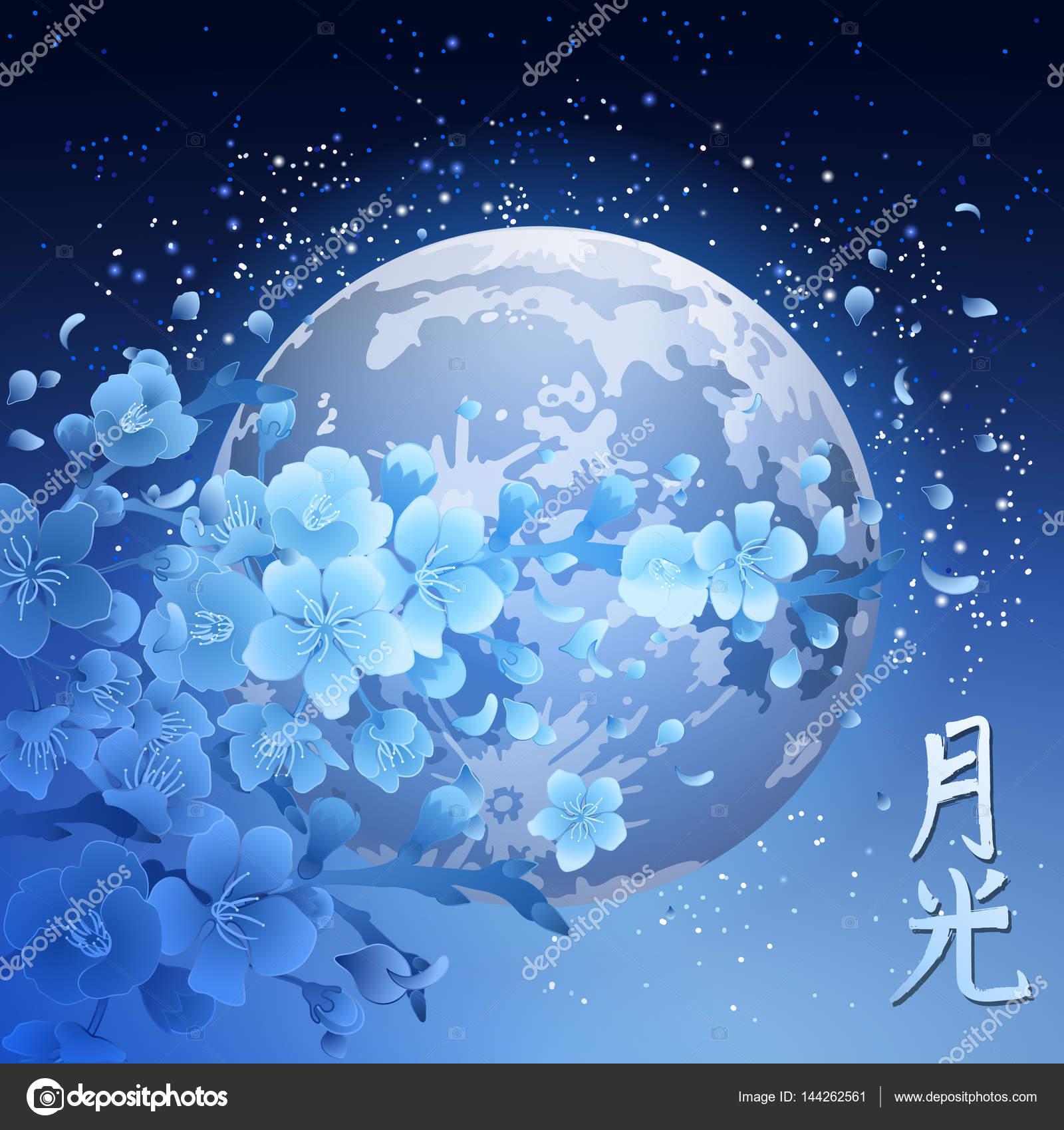 与月亮在夜晚星空背景上的蓝色樱花枝.在亚洲风格的复古插画.