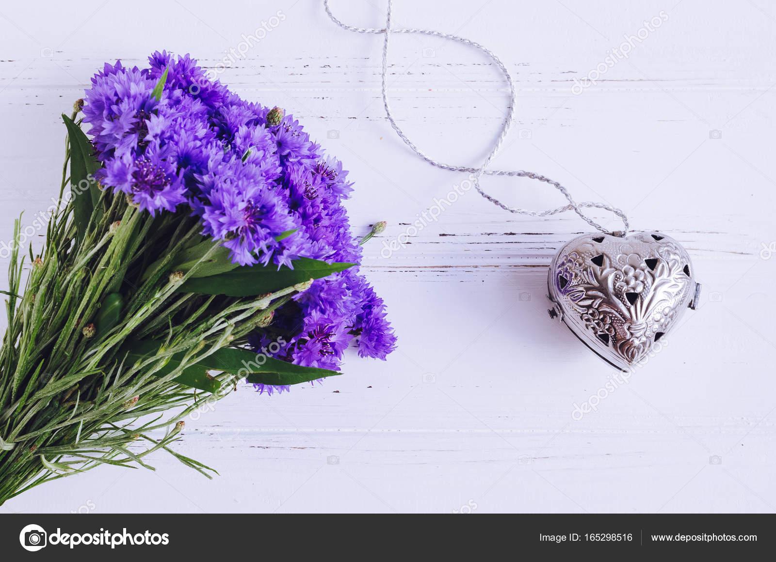 ヤグルマギクの画像 p1_30