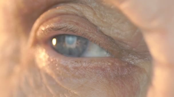 Видео голуй женшини фото 141-926