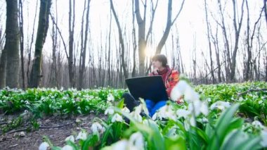 A Beautiful young girl is working with a laptop in the middle of a spring forest full of blossoming snowdrops