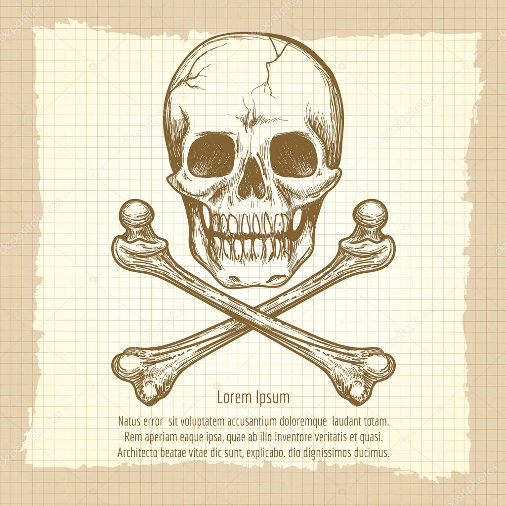 Scary Skulls  Download Free Vector Art Stock Graphics