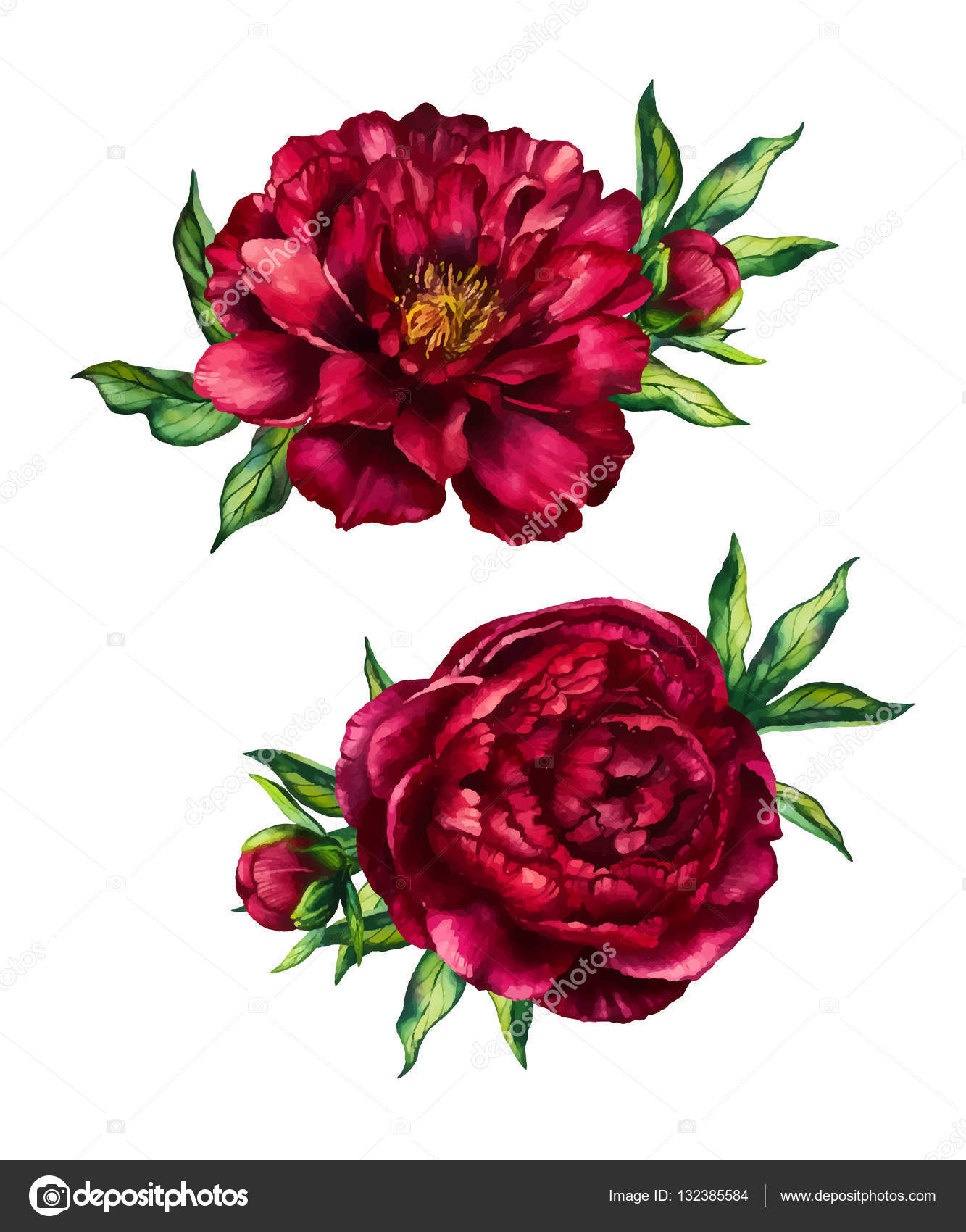 Chinese Red Peonies Painting