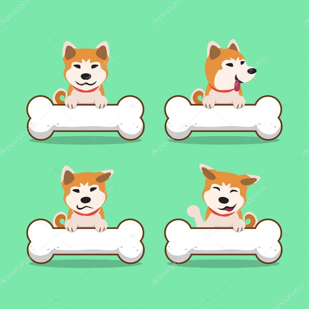 Cartone animato carattere akita inu cane con grandi ossa