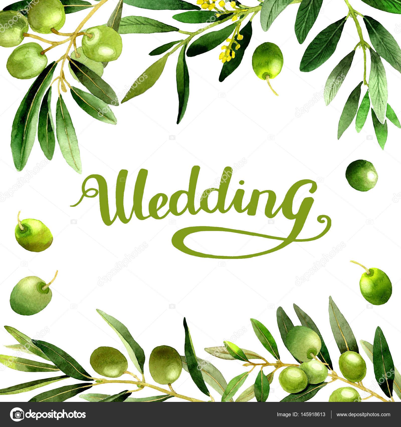 水彩画橄榄树为背景, 纹理, 包装模式, 框架或边框— 照片作者 my