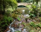 Anglická zahrada v Caserta