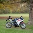 Постер, плакат: Honda CBR1000RR motorcycle parked in green park