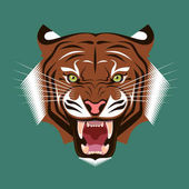 Angry growling tiger Color vector illustration