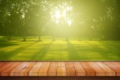 Wood floor panels with sunshine ray through forest