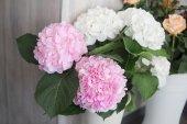 Květy růžové hortensia