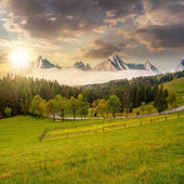 Rocky peaks behind the forest and meadow at sunset