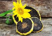 Slunečnice s slunečnicová semínka na dřevěných texture, rustikální