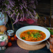 Постер, плакат: National cuisine Borscht Soup with tomato