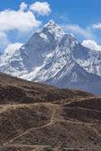 Pěší stezku před Ama Dabalm Hora