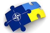 Spolupráce mezi Ukrajinou a Nato. Koncepce