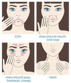 How to apply cream to the face and neck Design packaging Instructions