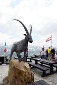 Besucher der Großglockner-Berggebiet