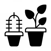 Vector illustration design of home Plants icon isolated on white background