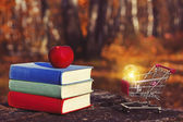 Stack of colorful books and an apple on the old wooden table in a dark forest at sunset. Shopping cart and light bulb. Business ideas and advertising. Back to school. Mysterious composition.