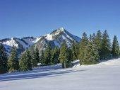 Wallberg in winter