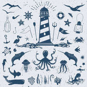 Big vector set with marine creatures and nautical objects: seagulls sharks fish octopus crab starfish jellyfish and other hand drawn animals and water plants