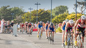 Cyklisté přímo pro silniční cyklistický závod