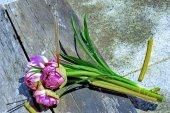 Vonné tyčinky na lotus vysvěcen obřad