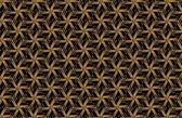 Abstraktní tmavě geometrický vzor hranoly. Geometrie mřížky texturu. Hranol květinové obrázky pozadí. Černé hnědé zelených modré červené kaštanové oranžové žluté zlato a fialově růžové laděných