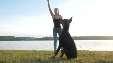 dívka nebo žena je chůze a hrát si s Dobrman pes v parku u jezera na pozadí západ slunce
