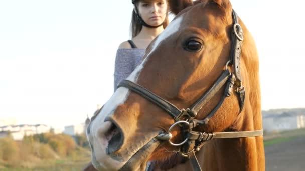 junge Frau auf einem Pferd auf dem Land. Pferdesport