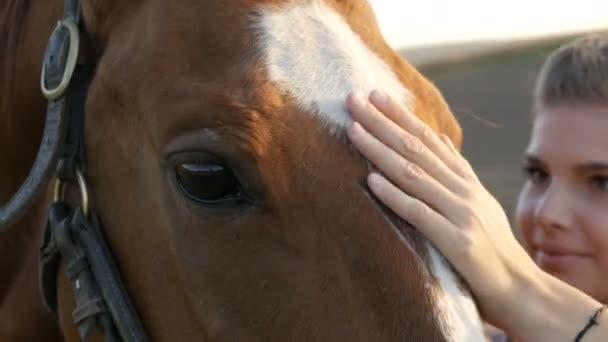 Mladá žena se postarat o svého koně